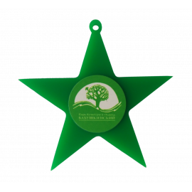 Медаль Звезда