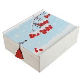 Набор «Зимняя ягода»