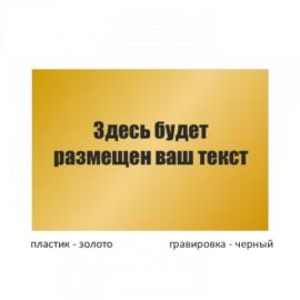 Табличка малая пластиковая гравированная T100GR_pl