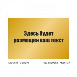 Табличка средняя пластиковая гравированная T200GR_pl