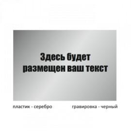 Табличка большая пластиковая гравированная T300GR_pl