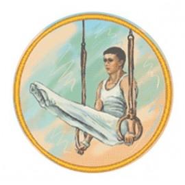 Эмблема EM6266