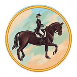 Эмблема EM6269