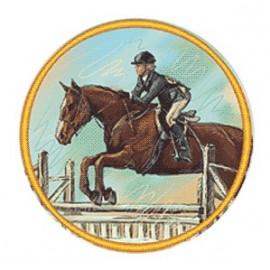 Эмблема EM6268