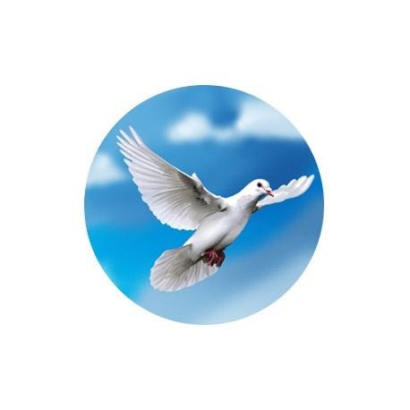 Эмблема EM6400 V11-325