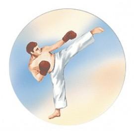 Эмблема EM6415