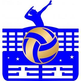 Медальница Волейбол за достижения