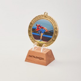 Медаль Самбо M260