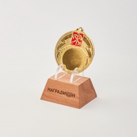 Медаль M304