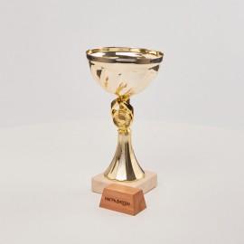 Кубок K2008